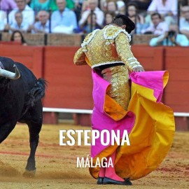 Entradas toros Estepona - Festejo Taurino