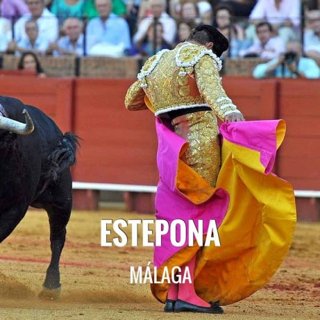 Bullfight tickets Estepona - Bullfighting festivities