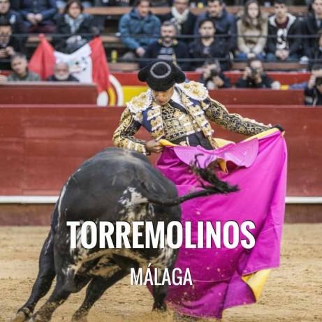 Bullfight tickets Torremolinos – Fiestas y Feria de San Miguel