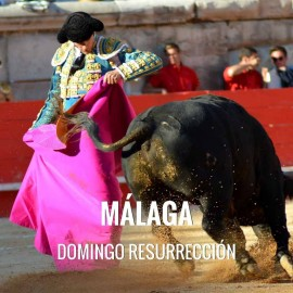 Bullfight tickets Málaga – Easter Sunday
