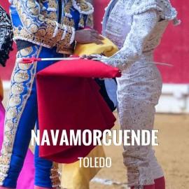 Entradas Toros Navamorcuende - Festejo Taurino