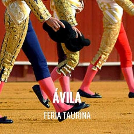 Bullfight ticket Avila