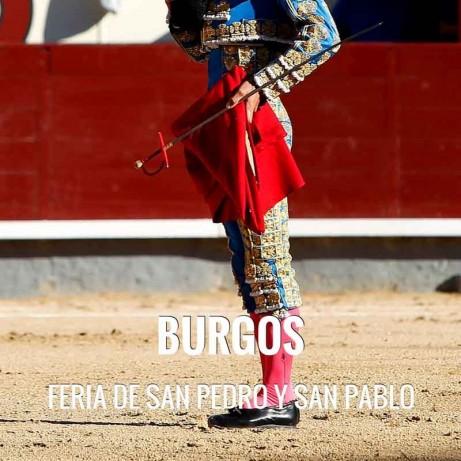 Bullfight tickets Burgos - San Pedro and San Pablo Fair