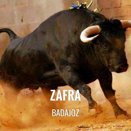 Bullfight ticket Zafra – Feria de San Miguel