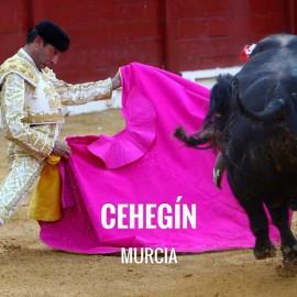 Entradas Toros Cehegin - Feria en Honor a la Virgen de las Maravillas