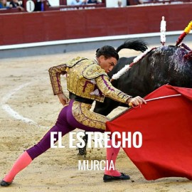 Bullfight tickets El Estrecho - Bullfighting Festivities