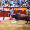 Bullfight tickets Muro - Bullfighting Celebration