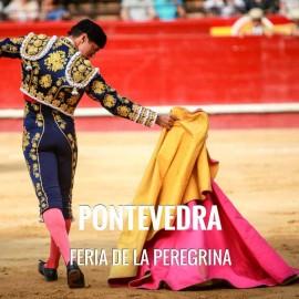 Entradas toros de Pontevedra - Feria de La Peregrina.