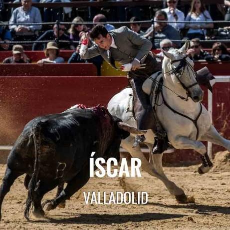 Bullfight ticket Iscar-Bullfighting festival