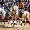 Bullfight ticket Valladolid – Feria de San Pedro Regalado