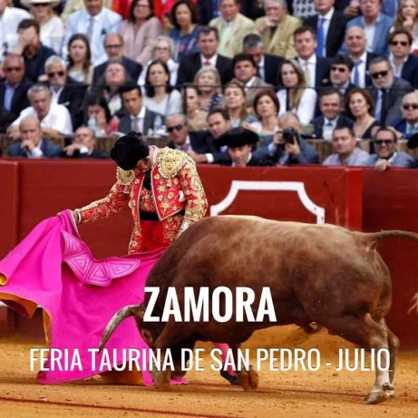 Bullfight ticket Zamora – Fiestas de San Pedro