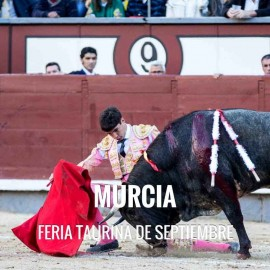 Bullfight Tickets Murcia -- Bullfighting festival 2018