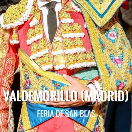 Bullfight tickets Valdemorillo – San Blas Festivities