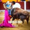 Bullfight tickets Barbastro - Nuestra Señora de Barbastro Festivities