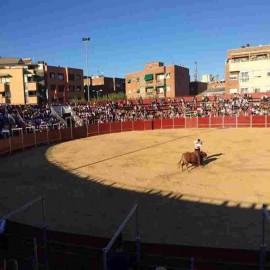 Majadahonda (Madrid). Bullring