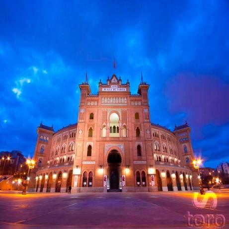 Visita Guiada Plaza Toros Madrid - Museo