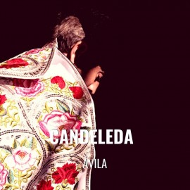 Bullfight tickets Candeleda - Bullfighting fest