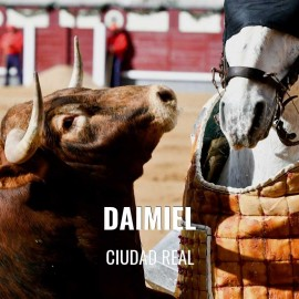 Bullfight tickets Daimiel - Bullfighting Fair