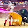 Bullfight tickets Andujar - Bullfighting fest