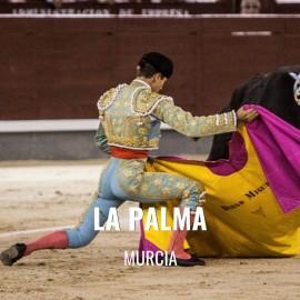 Entradas Toros La Palma - Festejo Taurino
