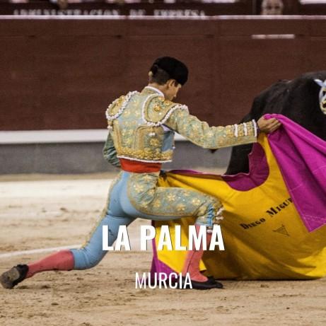 Bullfight Tickets La Palma - Bullfighting festival