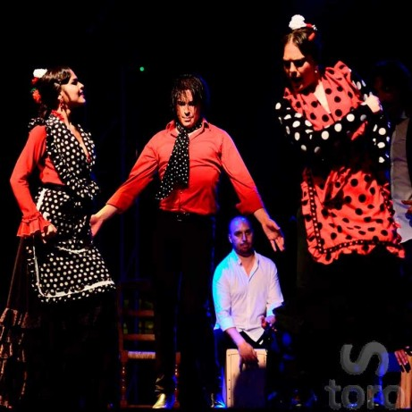 Visita Guiada Plaza de Toros Madrid + Flamenco
