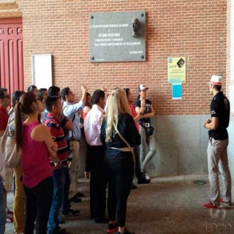 Guided visit Madrid bullring – Group or private visit