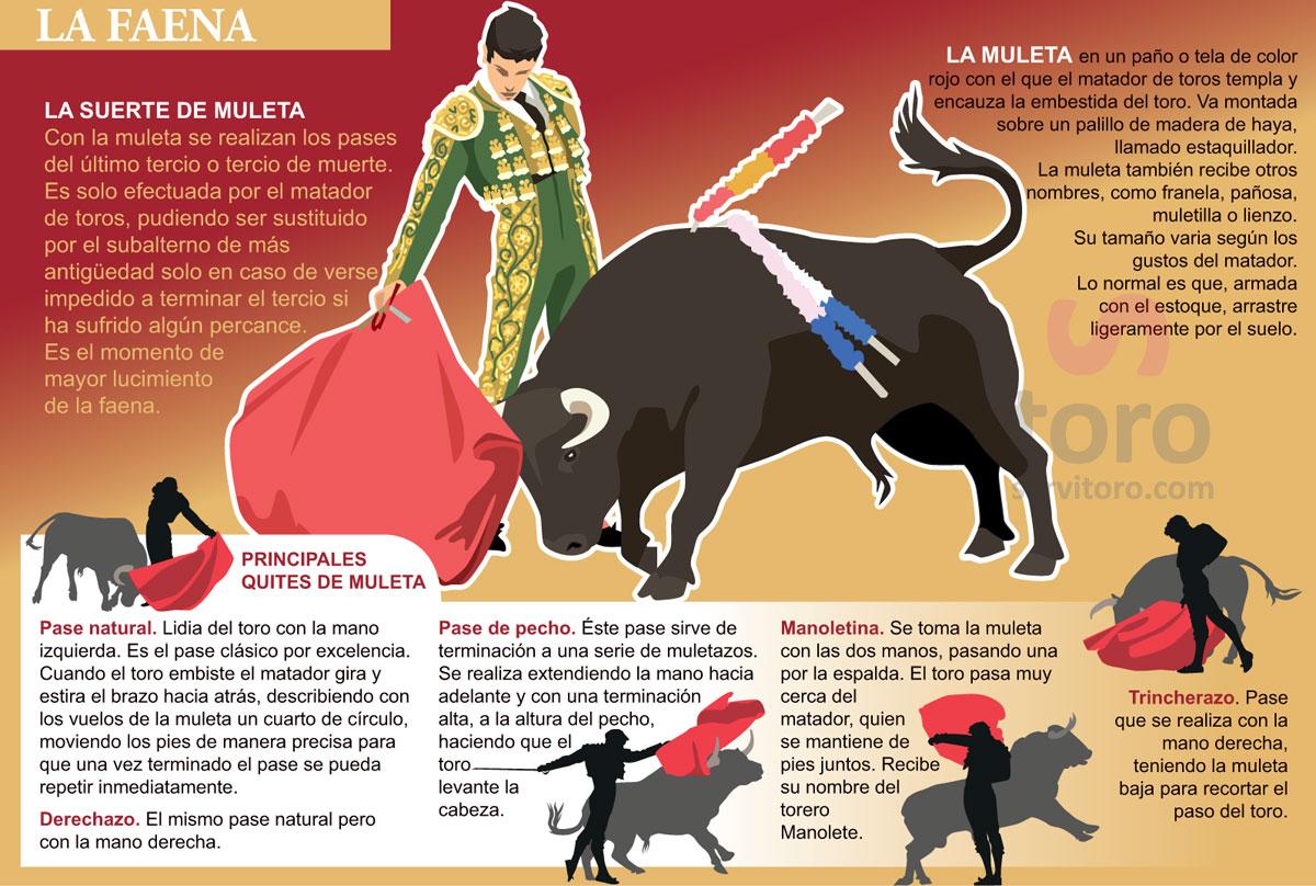 La Suerte de Muleta en la corrida de toros, capote, Muleta, La faena