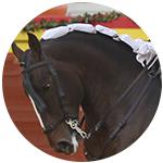 bullfight tickets santander