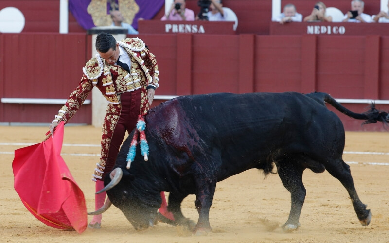 Manzanares bullfighter