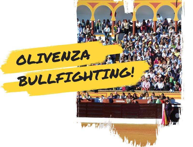Olivenza bullfighting fair