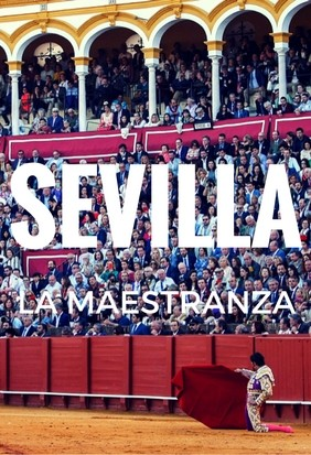 Buy your bullfight Tickets Seville. On Sale!