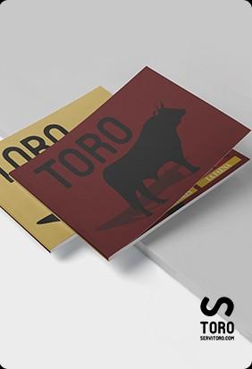 Libro toro en español e inglés