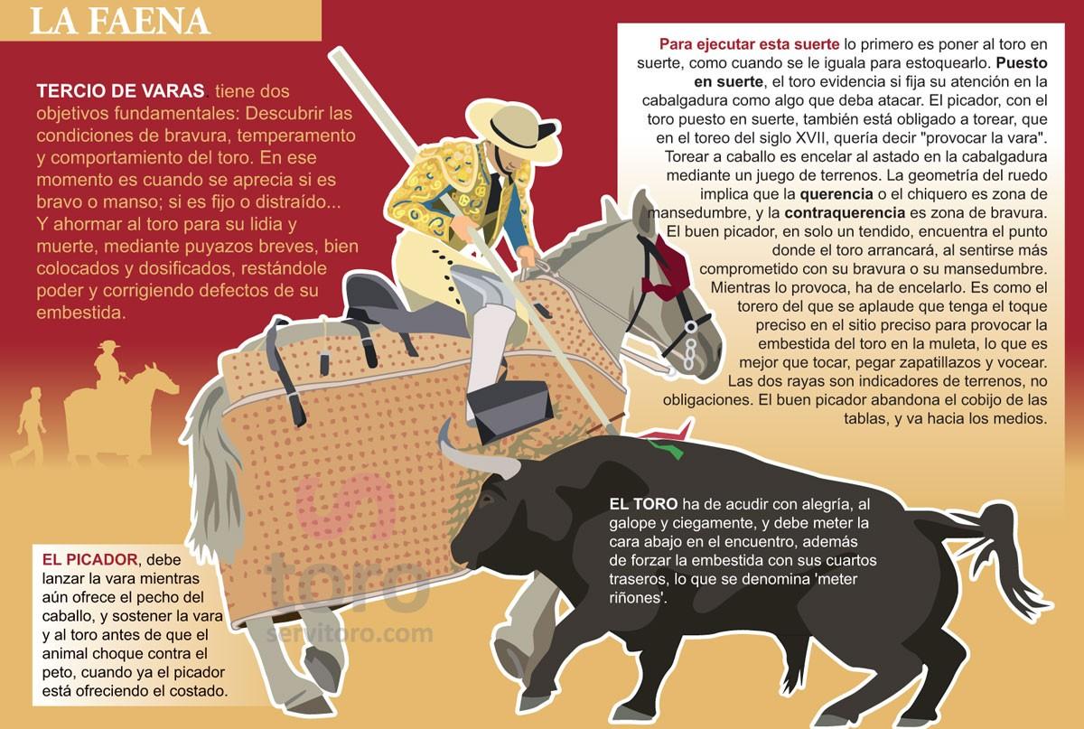 El Tercio de Varas para descubrir la bravura del toro de lidia