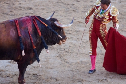 EL Juli cuts the only ear in the seventh of Pamplona