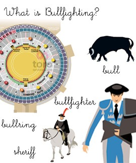 What is Bullfighting?