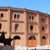 Valladolid se viste de largo por San Pedro Regalado