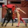Luis Bolívar da una vuelta al ruedo en el último Desafío Ganadero
