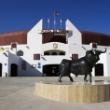 Roquetas will celebrate three bullfights for Santa Ana