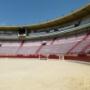 Tauroemoción avanza en el proyecto de Jaén