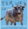 Cartel Toros Teruel