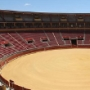 Four bullfighting celebrations at the Fair of 'Nuestra Señora de la Salud'